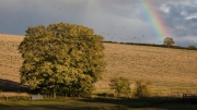 rainbow-with-rooks by r-albright