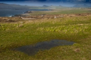 dingle-landscape by r-albright