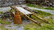 Irish Donkey Cart by Jim Bullock