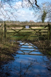Gate Reflection by Terry Onslow