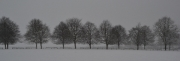 Lydiard Winter by Katherine Davis