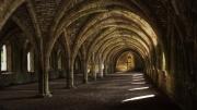 Cellarium by Tony Marson