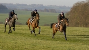On the Gallops by Cathy Fitzherbert