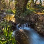 Winter Stream by Tony Marson