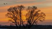 Elbe Sunset 2 by Alex Cranswick