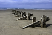 Beach Divider by Andrew Purdy
