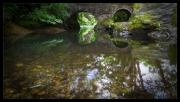 Bridge-reflection by Malcolm Cole