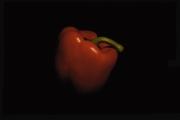 Red Pepper by Jim Bullock