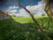 Near the stone circle by Robert Albright FRPS